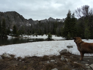 Hiking with the Kyky in Big Sky
